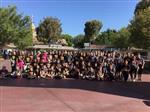 Blended Learning in Disneyland
